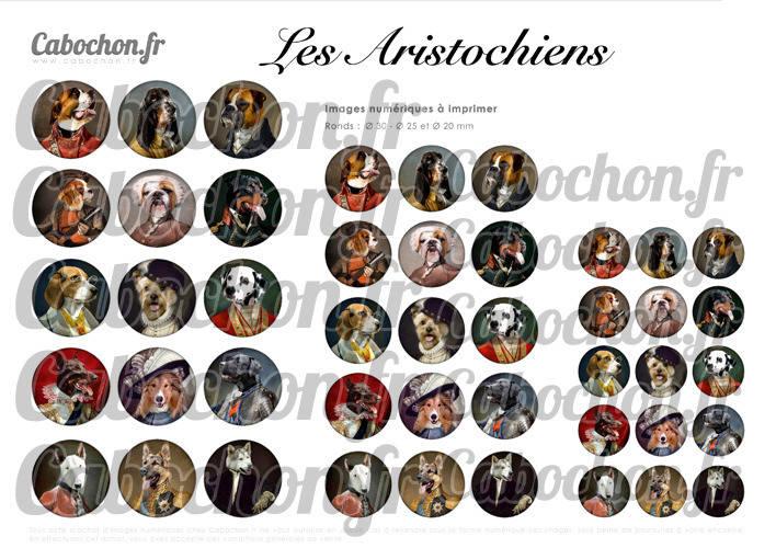 Les Aristochiens ☆ 45 Images Digitales Numériques RONDES 30 25 et 20 mm Page de collage digital pour cabochons