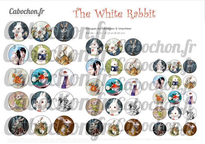 The White Rabbit ☆ 45 Images Digitales Numériques RONDES 30 25 et 20 mm Page de collage digital pour cabochons