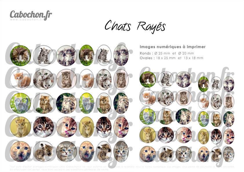 ☆ 60 Images Digitales / Numériques RONDES 25 et 20 mm et OVALES 18x25 et 13x18 mm ° Chats Rayés ° - Page d'images pour cabochons