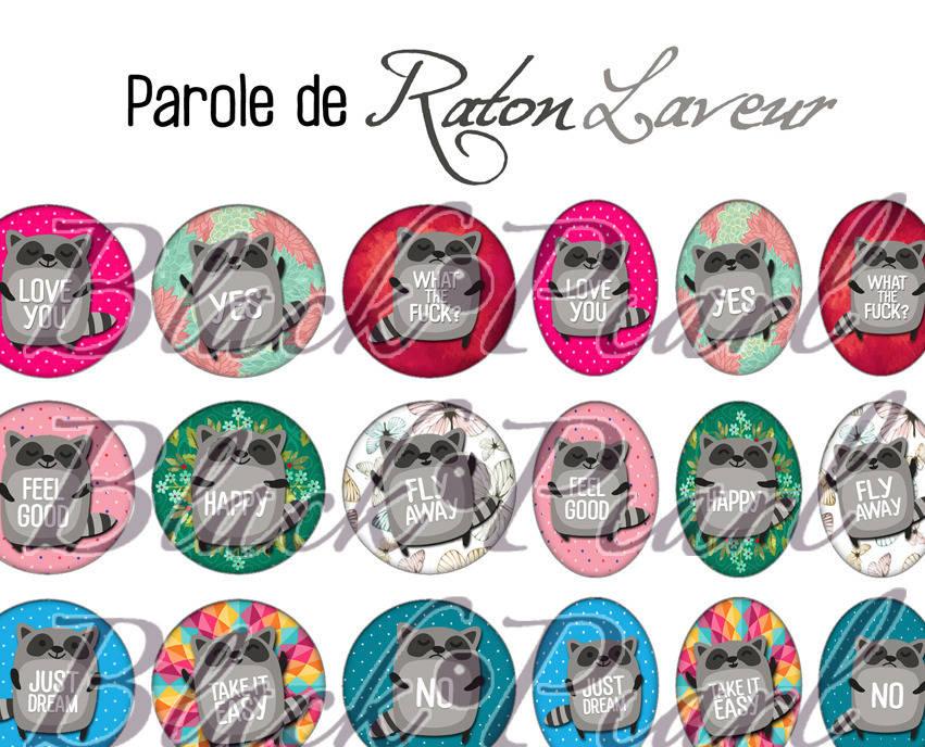 ° Parole de Raton Laveur ° - Page de collage digital cabochons - 60 images numériques à imprimer