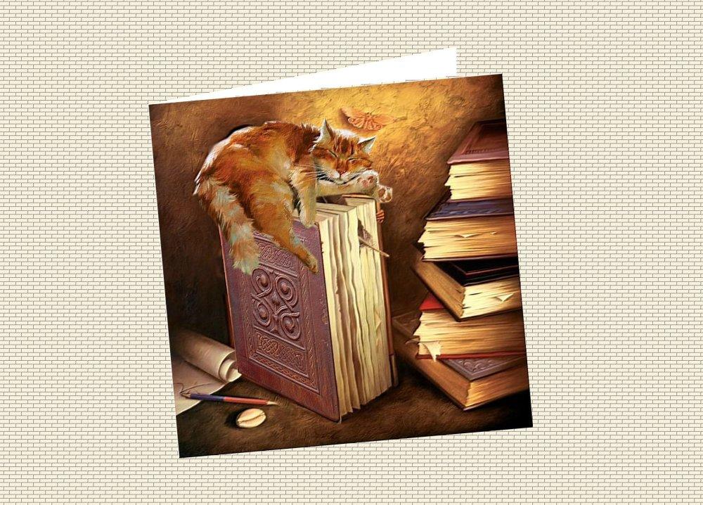carte chat, carte de voeux :sieste féline