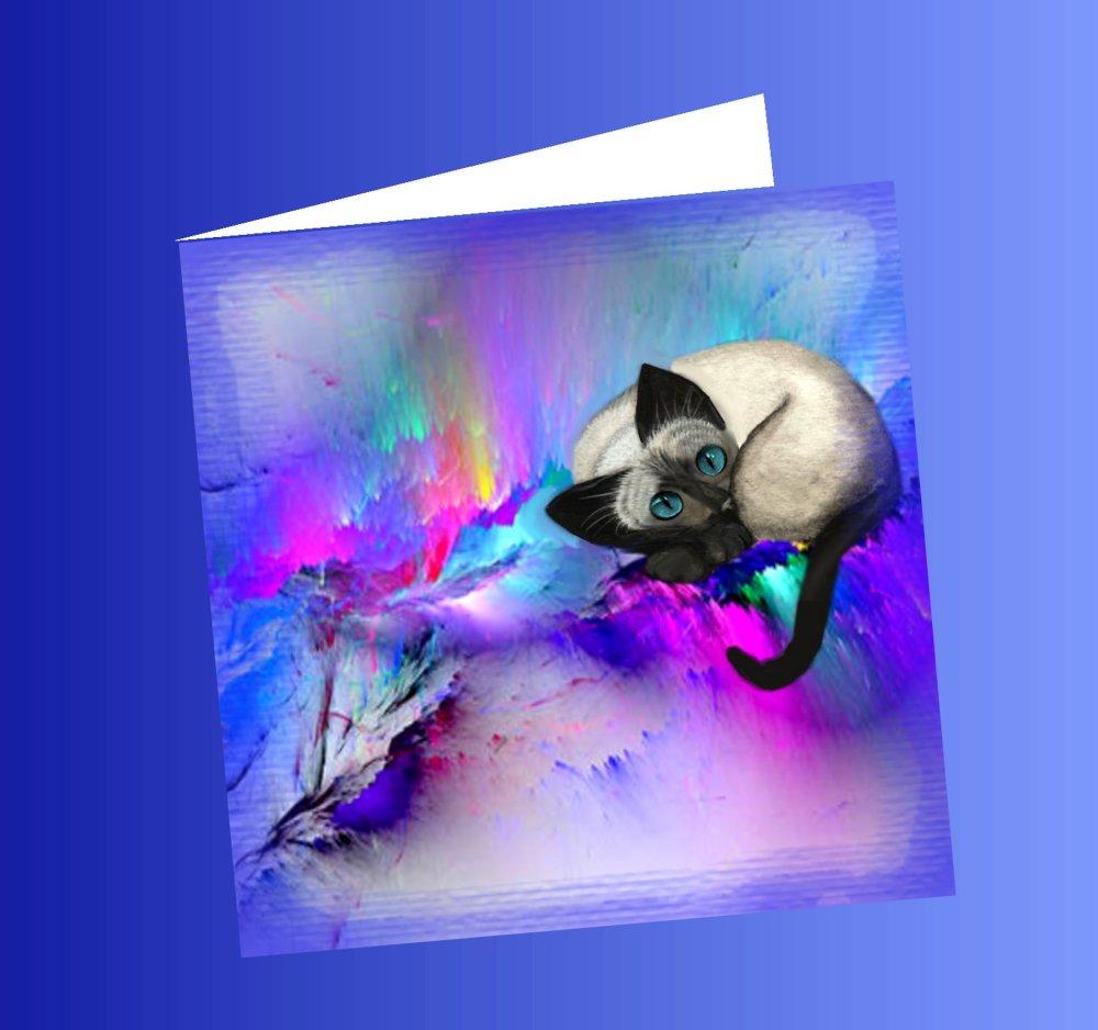 carte double , carrée avec chat ; chat siamois