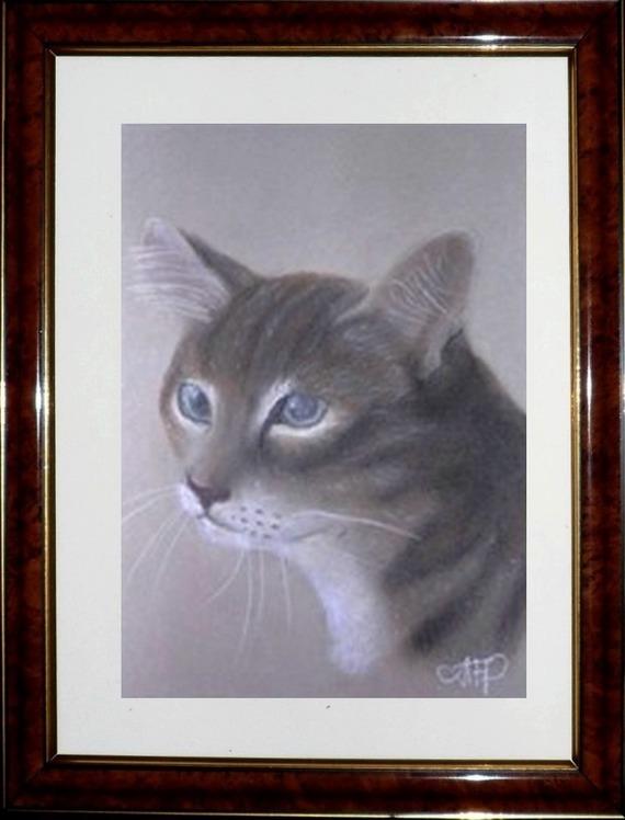 Portrait d'un chat au pastel sec : l'attente