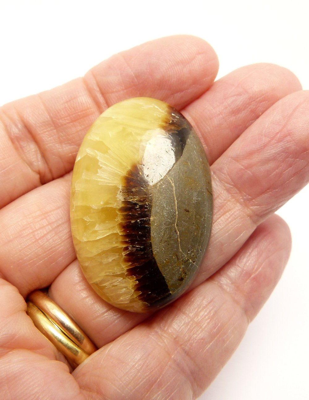 Cabochon pierre gemme en septaria appelé aussi Pierre du Dragon