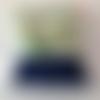 Tote bag,sac course ou plage avec un tissu imprimé feuillage exotique, toucan, bleu et écru