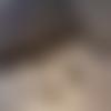 Boucle d'oreille homme cauri, bijou coquillage bronze, longueur pendentif au choix