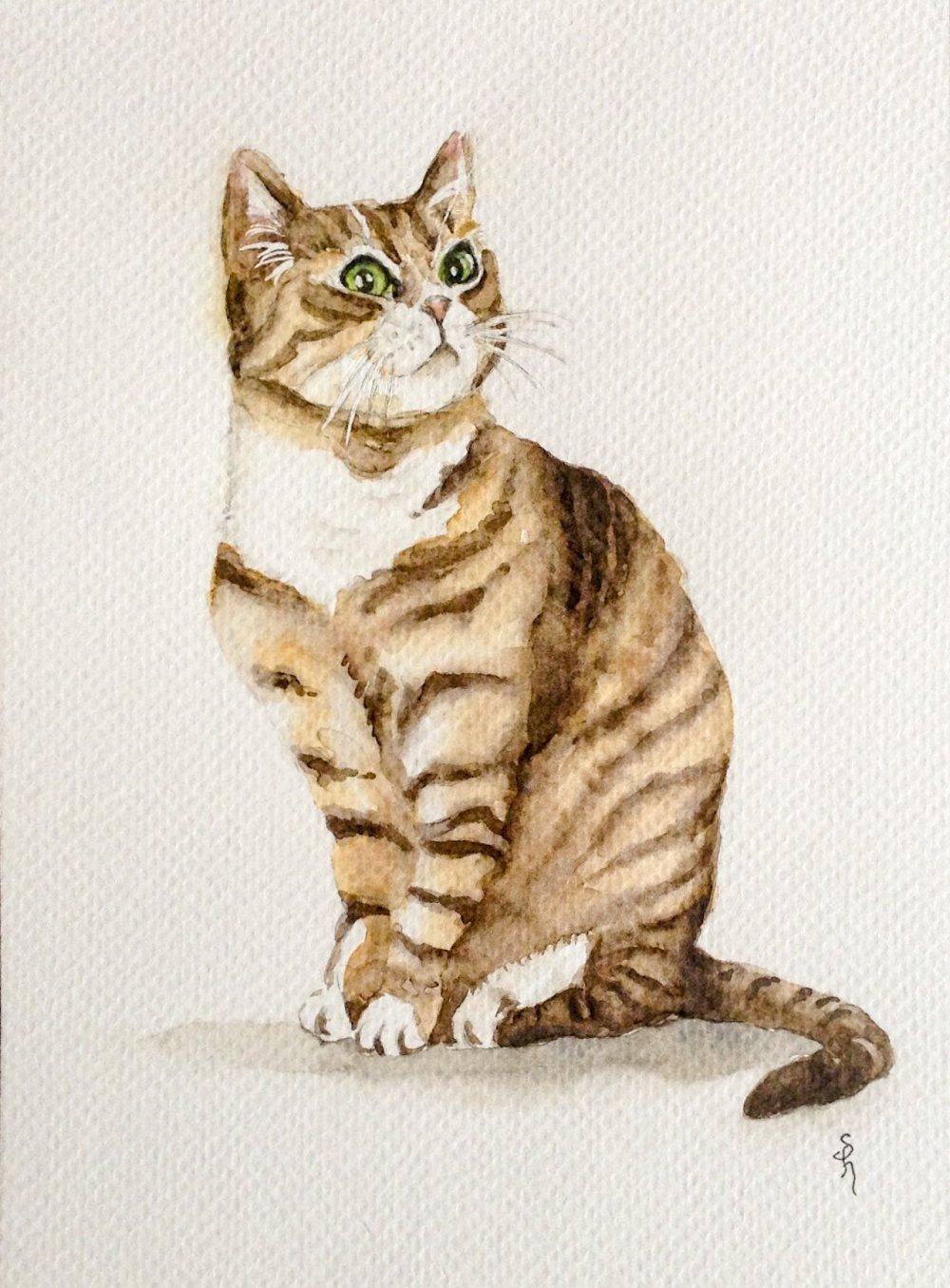 """""""Chat tigré"""" à l'aquarelle"""