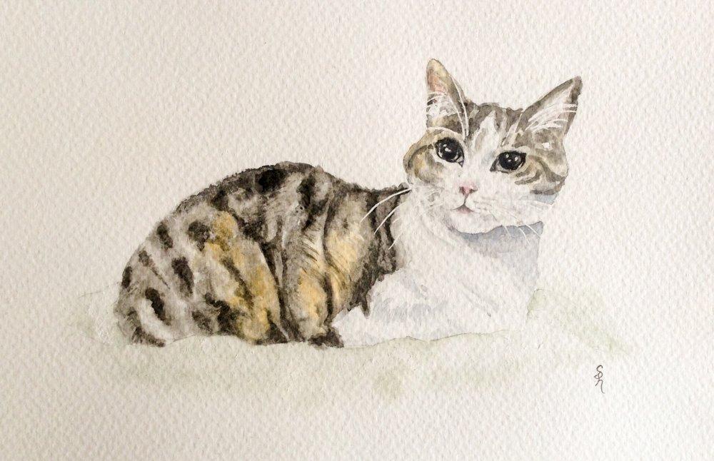 """"""" Chat raffiné """"à l'aquarelle"""