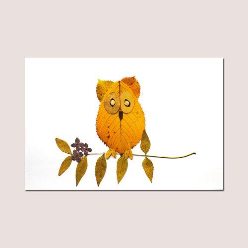 9 petites photos land-art feuilles d'automne - animaux - décoration chambre enfant