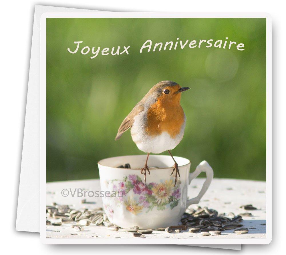 Carte Joyeux Anniversaire Rouge Gorge Photo Nature Oiseau Un Grand Marche