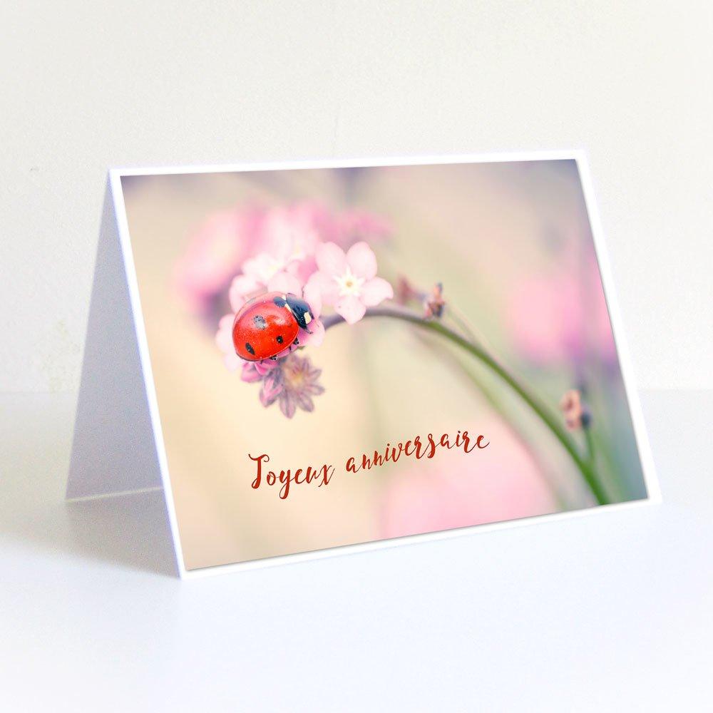Carte anniversaire coccinelle