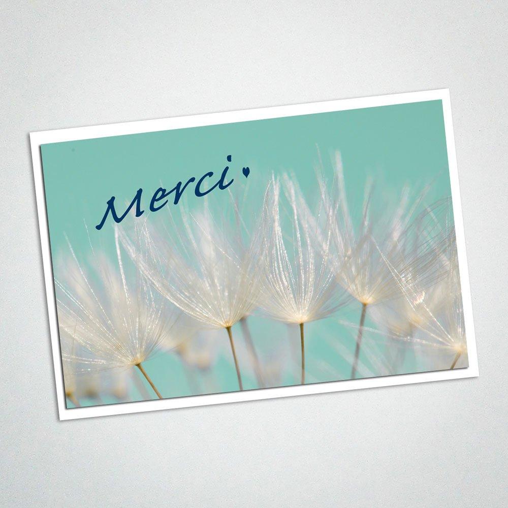 Carte MERCI photo graines de pissenlit personnalisée