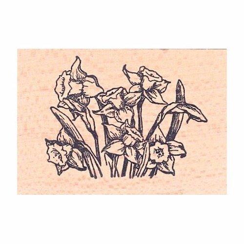 Tampon en bois - bouquet de jonquilles - marque aladine