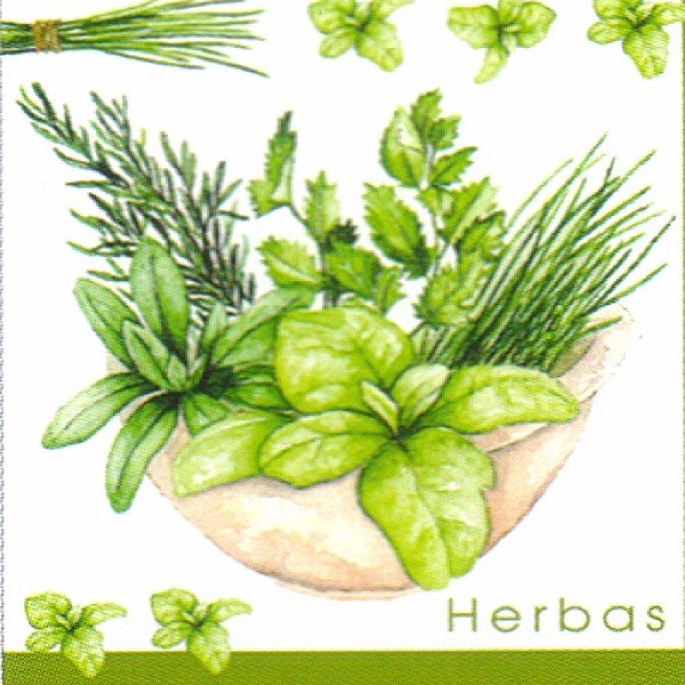 Lot 20 Serviettes - Plantes aromatiques dans un beau pot