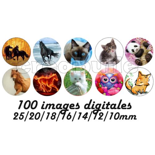 100 images digital numérique toutes taille animaux chat cheval renard... pour scrap, bijou ou même couture sur flex imprimable