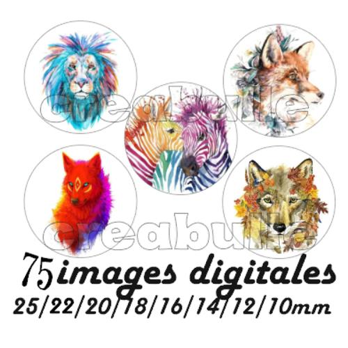 75 images digital numérique toutes taille animaux coloré pour scrap, bijou ou même couture sur flex imprimable