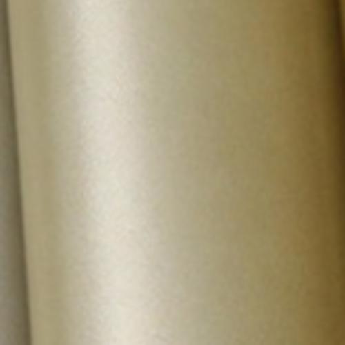 Coupon feuille de simili cuir irisé dorée pâle 22x19cm