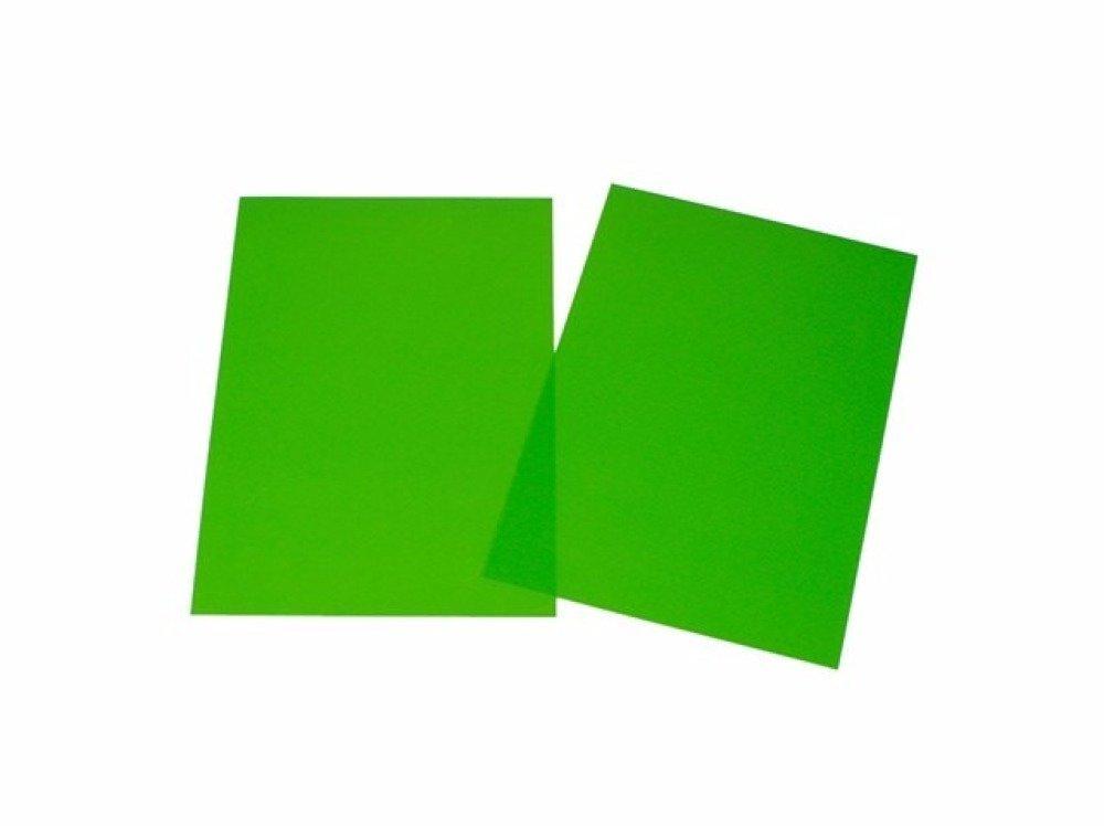 Feuille de plastique dingue couleur vert 29x20cm