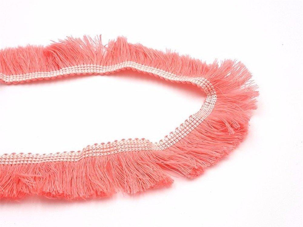 1m Galon à franges 25mm couleur rose