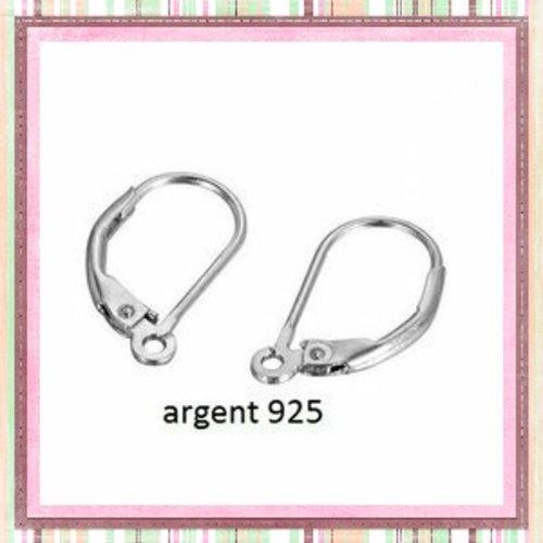 X10 crochets oreilles à levier arrondies argent 925