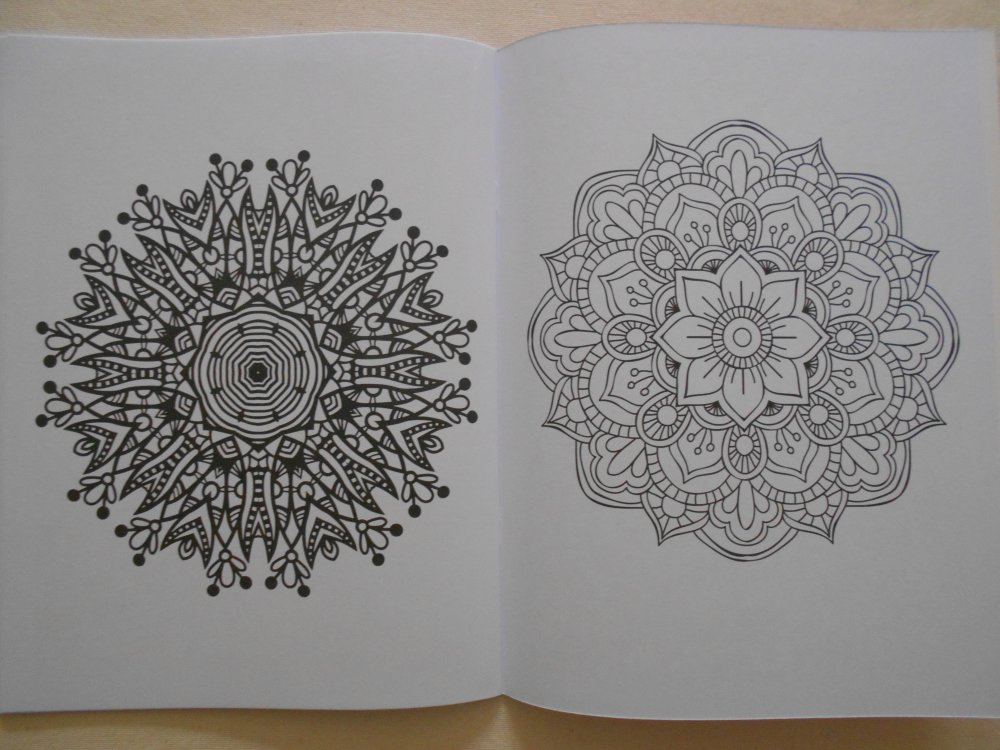 Album De Coloriage Creatif Pour Adultes Mandala Fleurs Coquillages Papillons Rosaces Etc 16 Pages 32 Dessins Un Grand Marche