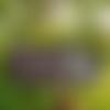 """Décoration de jardin,pancarte,ardoise décorative """"mésanges""""déco terrasse,plaque de maison,création troglodyte"""
