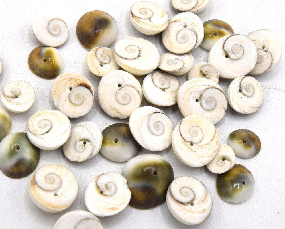 Lot de 20 Perles de coquillages en spirale puka - troué au centre