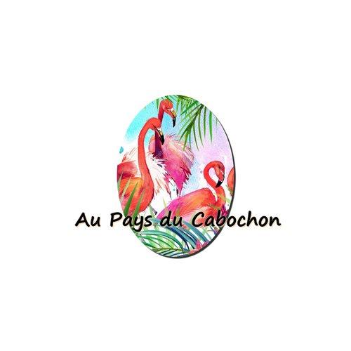 Cabochon image en verre 13x18mm