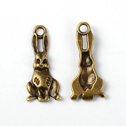 Lot de 10 breloques bronze  (br014)