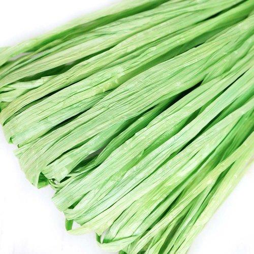 5m vert clair mat plat raphia bande en nylon de broderie à la main en fil d'orfèvrerie luneville tam sku-133607