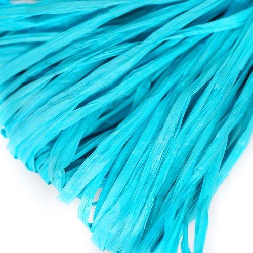 5m bébé bleu mat plat raphia bande en nylon de broderie à la main en fil d'orfèvrerie luneville tamb sku-133608