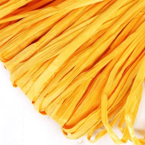 5m jaune mat plat raphia bande en nylon de broderie à la main en fil d'orfèvrerie luneville tambour  sku-133609