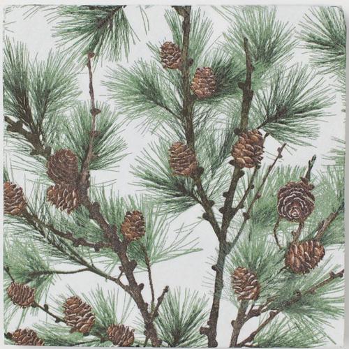 Serviette en papier motifs branches, feuilles et pommes de pin sur fond blanc