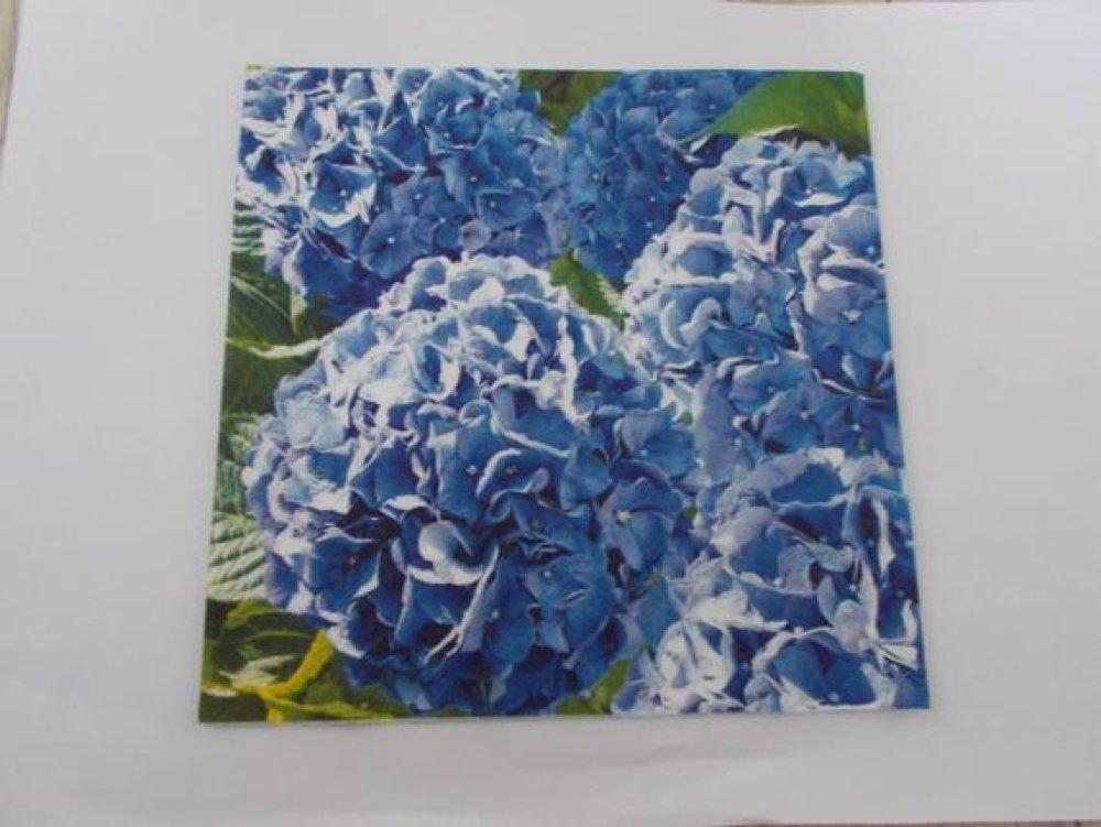 serviette en papier hortensias bleues 33 cm