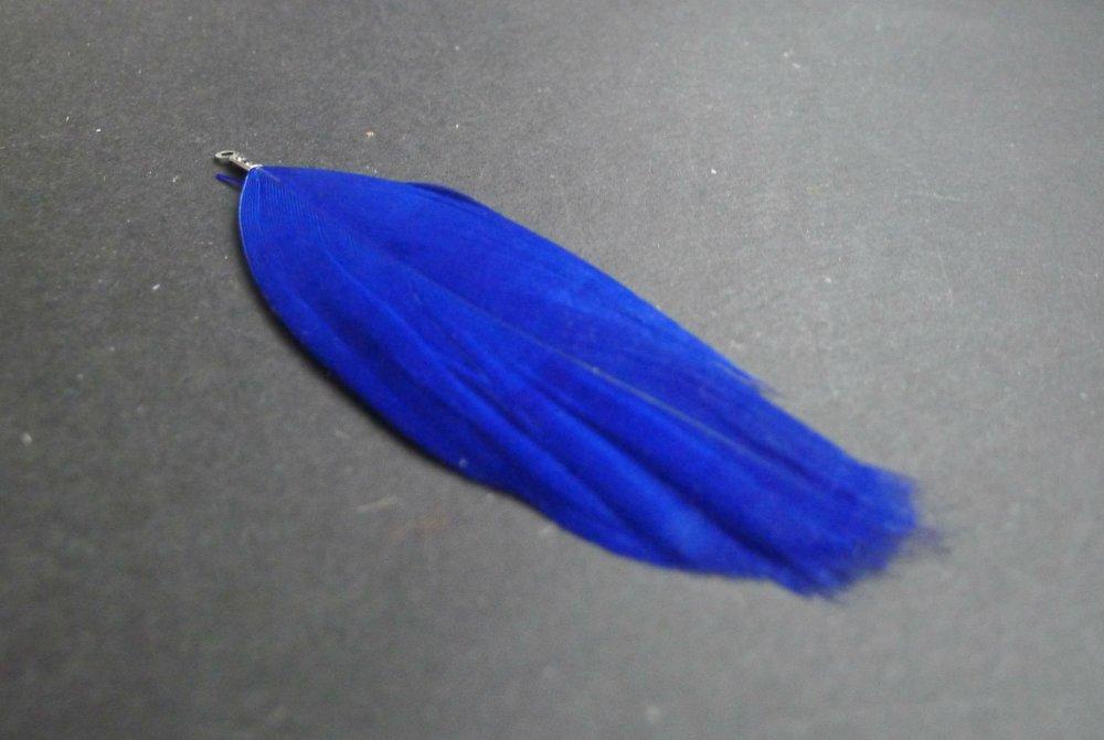 plume ethnique bleu 25x90mm
