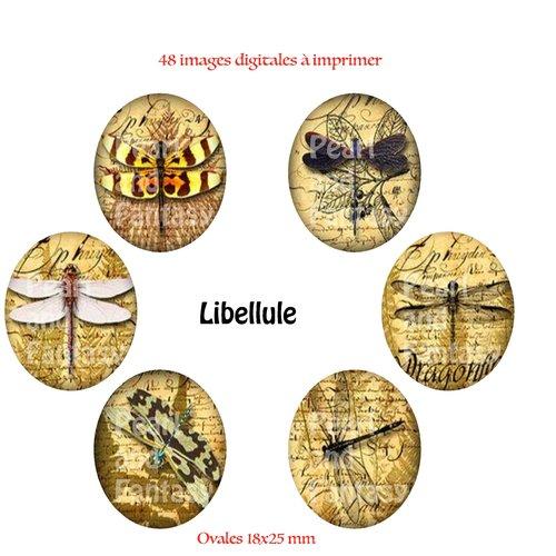 "Images digitales ovales ""libellule"" 18x25 mm"
