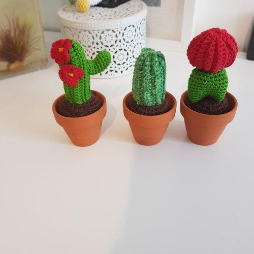 Ensemble cactus
