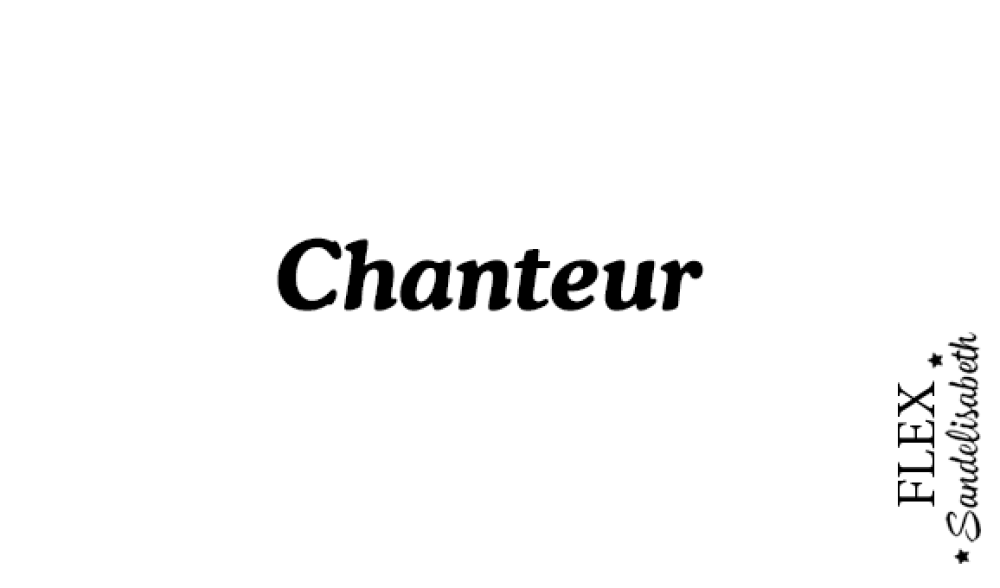 appliqué thermocollant chanteur flex