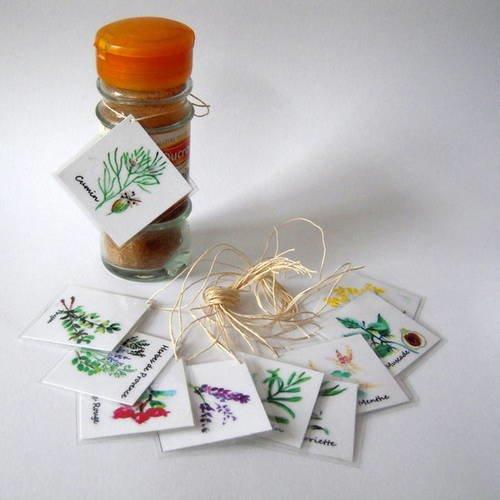 Etiquettes aquarelle aromates et épices - fait main