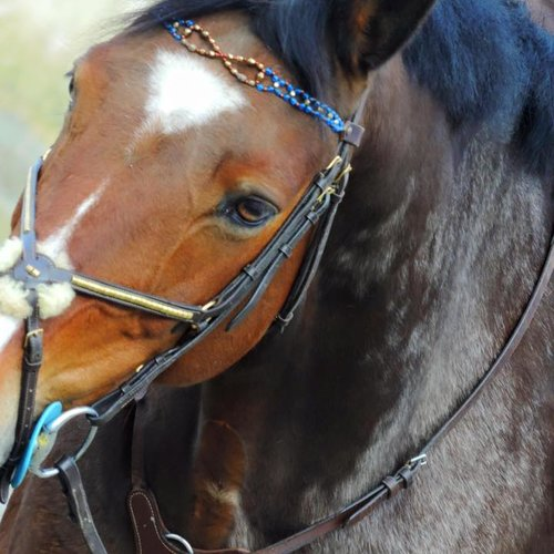 "Frontal cheval sur mesure ""infini"""