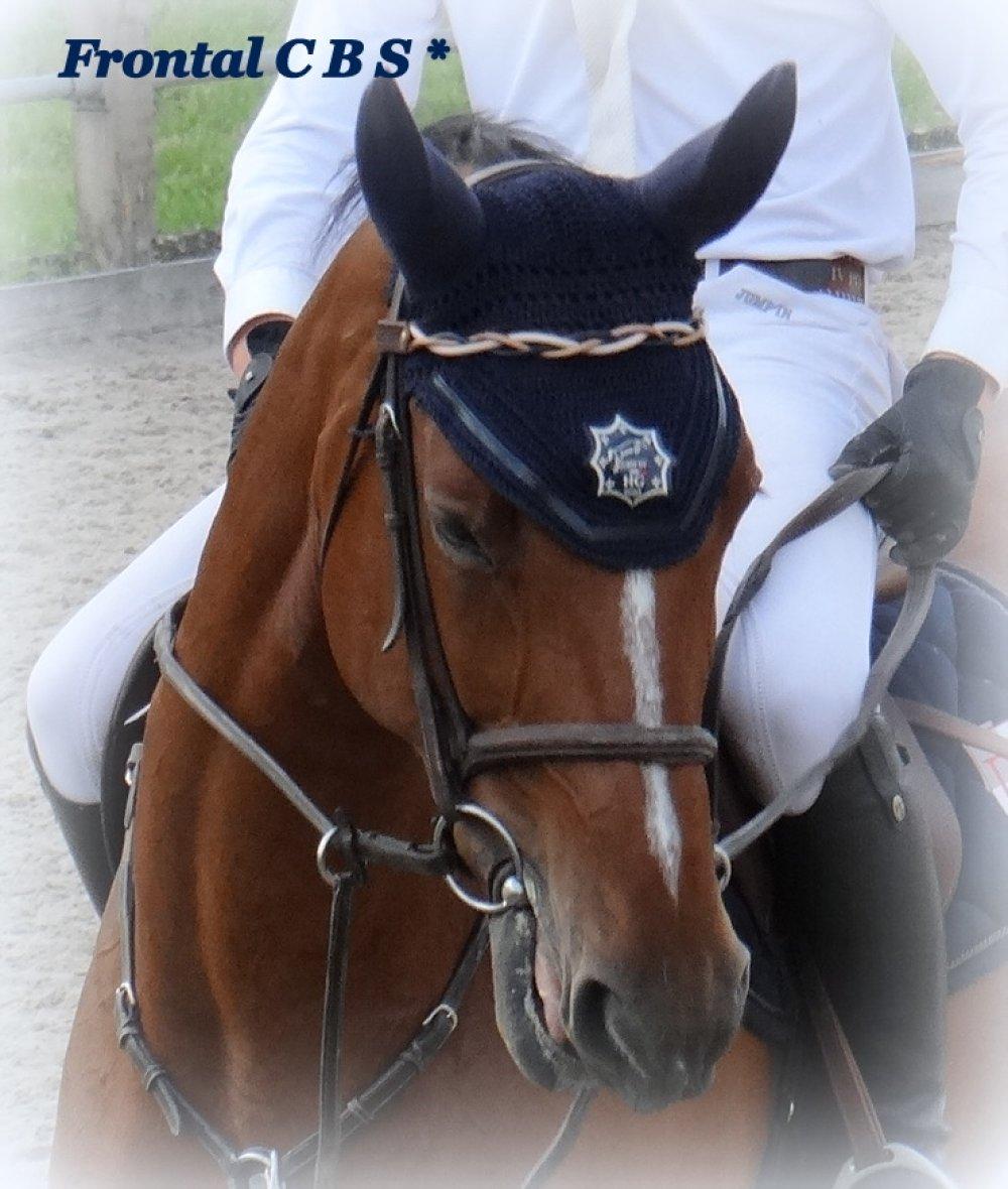 """Frontal cheval modèle """"Nils"""""""
