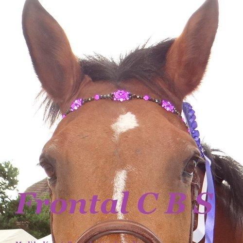 """Frontal personnalisé cheval modèle """" cinq fleurs"""""""
