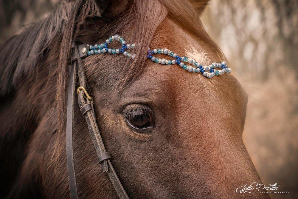 Frontal cheval sur mesure Steph