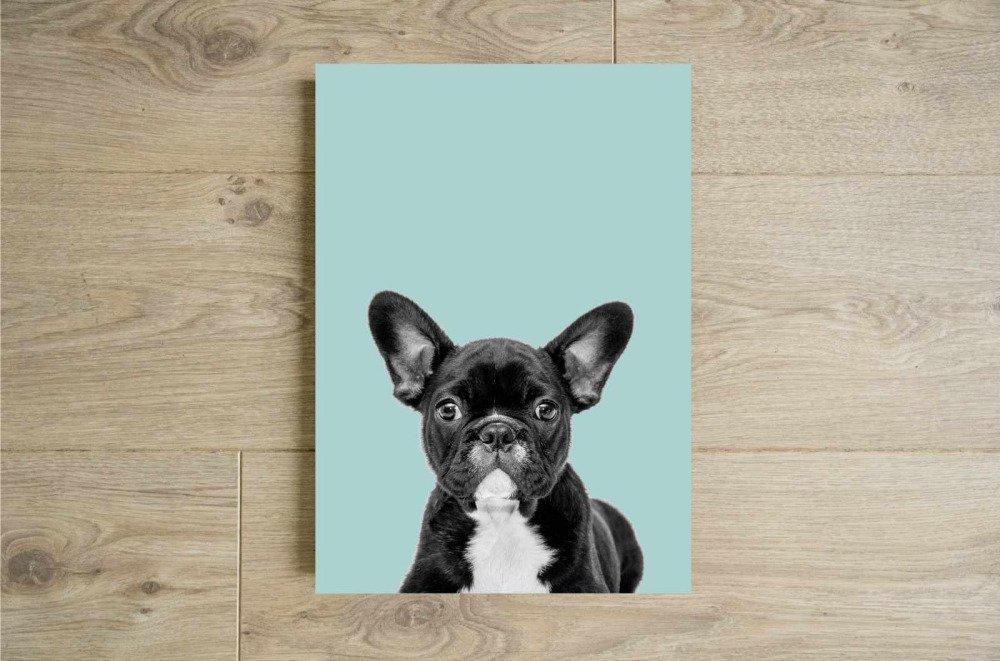 Affiche chien, Affiche bouledogue, Cadeau bouledogue, Décoration chien, Peek a boo