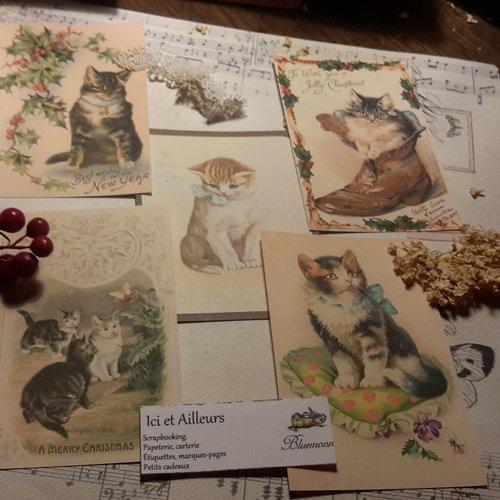 Lot 5 images,  cartes chats,   papier fantaisie,  scrapbooking, loisirs créatifs,  papeterie, cartes.