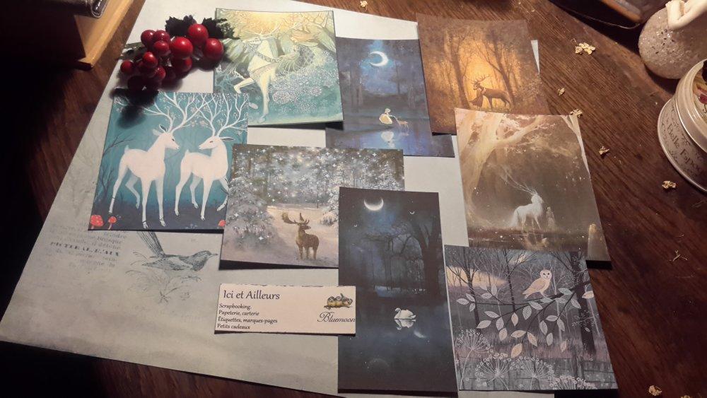 Lot 7 images +une offerte, cartes, féérie papier,  fantaisie,  scrapbooking, loisirs créatifs,  papeterie, cartes.