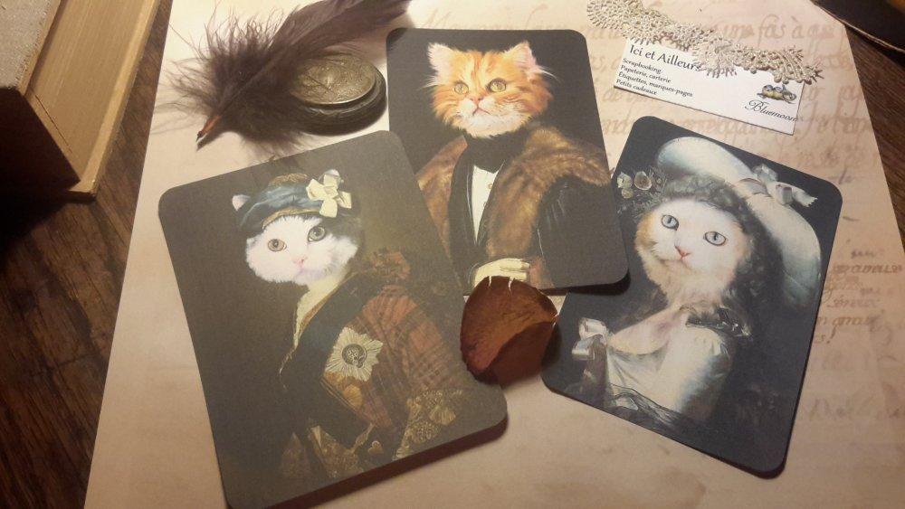 Lot 3 grandes images, cartes, chats en habits,papier fantaisie,  scrapbooking, loisirs créatifs,  papeterie, cartes.