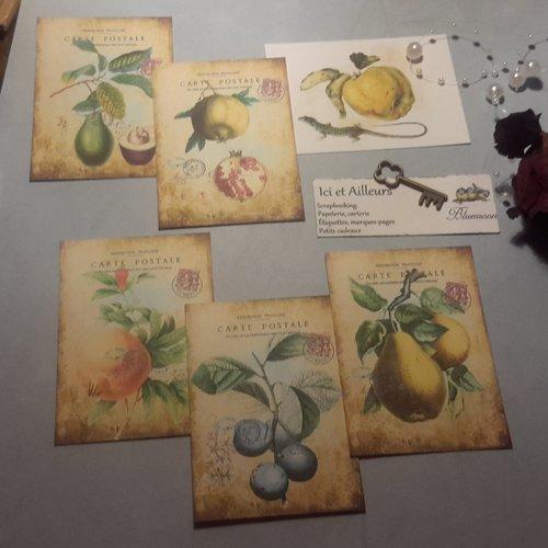 Lot  6 images. fruits, botanique. créations de cartes, albums, journal,loisirs créatifs, home déco.