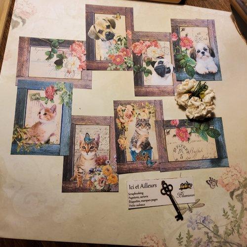 Lot 8 images,  bébés animaux, papier motifs, scrapbooking, loisirs créatifs,  papeterie, cartes. créations. home déco