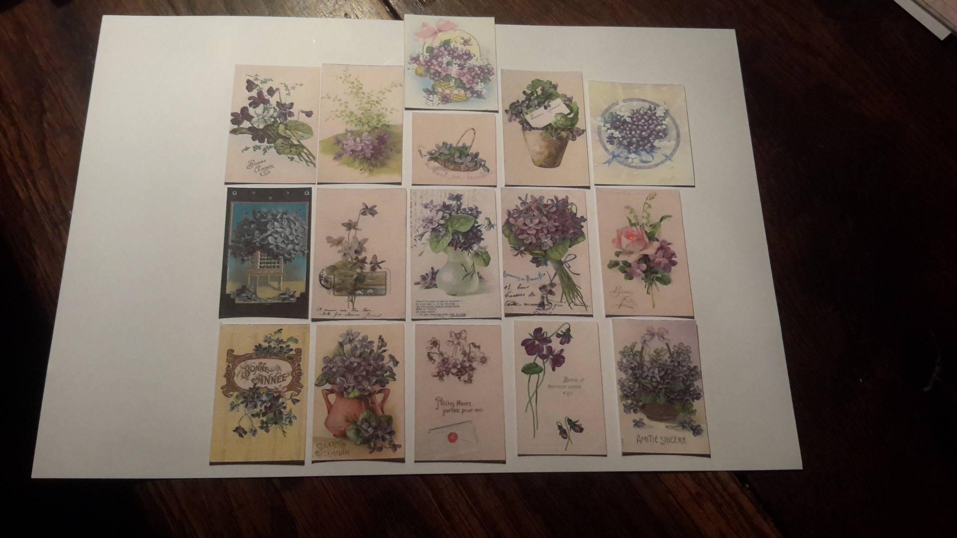 Lot de  16 embellissements, tags,  découpes papier vintage.  Thème fleur, la violette. Scrap.